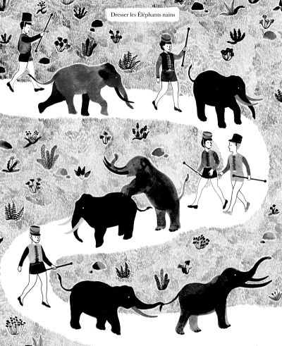 elephantsnains